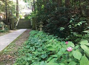 14. 二所山田神社
