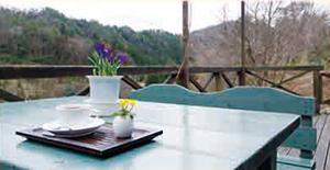 1. 花と喫茶 さくや(山野草の庭)
